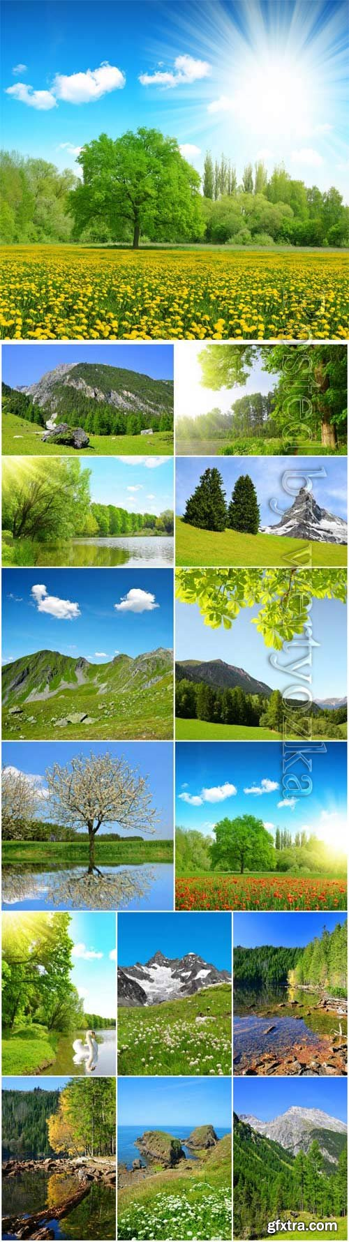 Beautiful nature in summer season stock photo