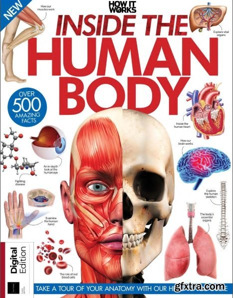 How It Works: Inside the Human Body 3rd Edition