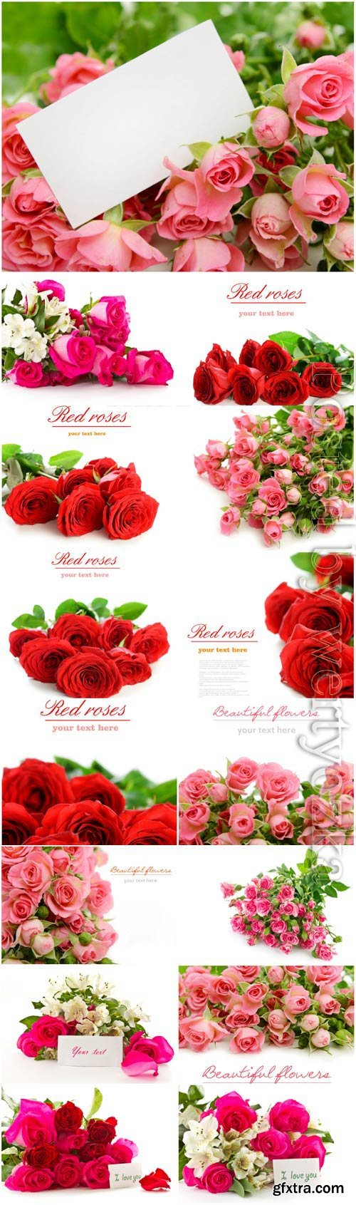 Bouquets of lovely roses stock photo
