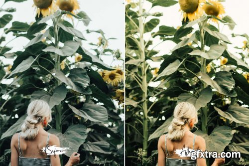 CreativeMarket - 15 Photoshop Actions ACR Sunshine 6119592