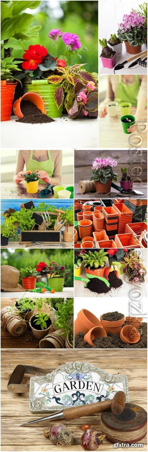 Gardening, flower pots stock photo