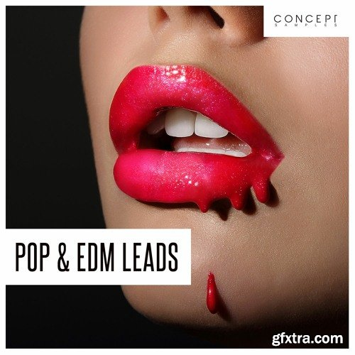 Concept Samples Pop and EDM Leads WAV
