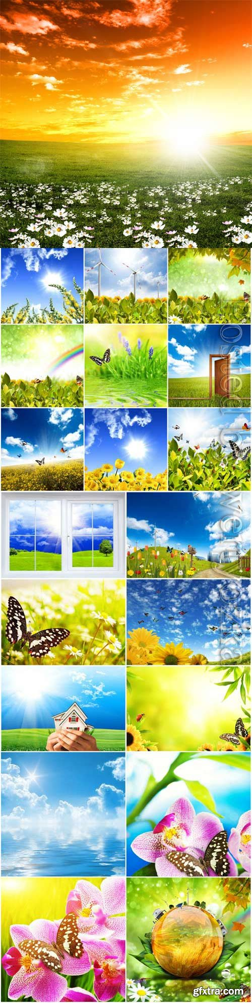 Floral summer backgrounds stock photo