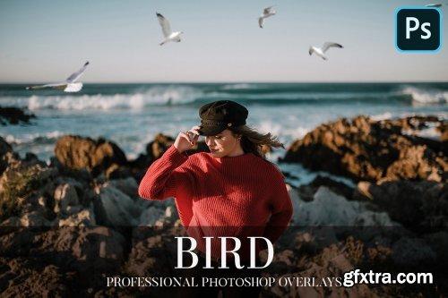 CreativeMarket - Bird Overlays Photoshop 4934539