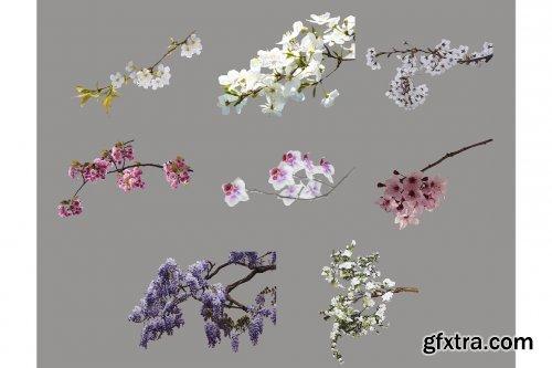 CreativeMarket - Flower Branch Overlays, PNG 5264581