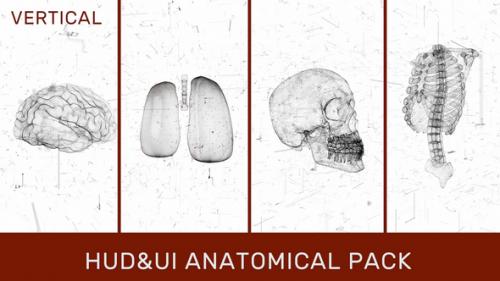Videohive - HUD UI Anatomical Pack - 33068686 - 33068686