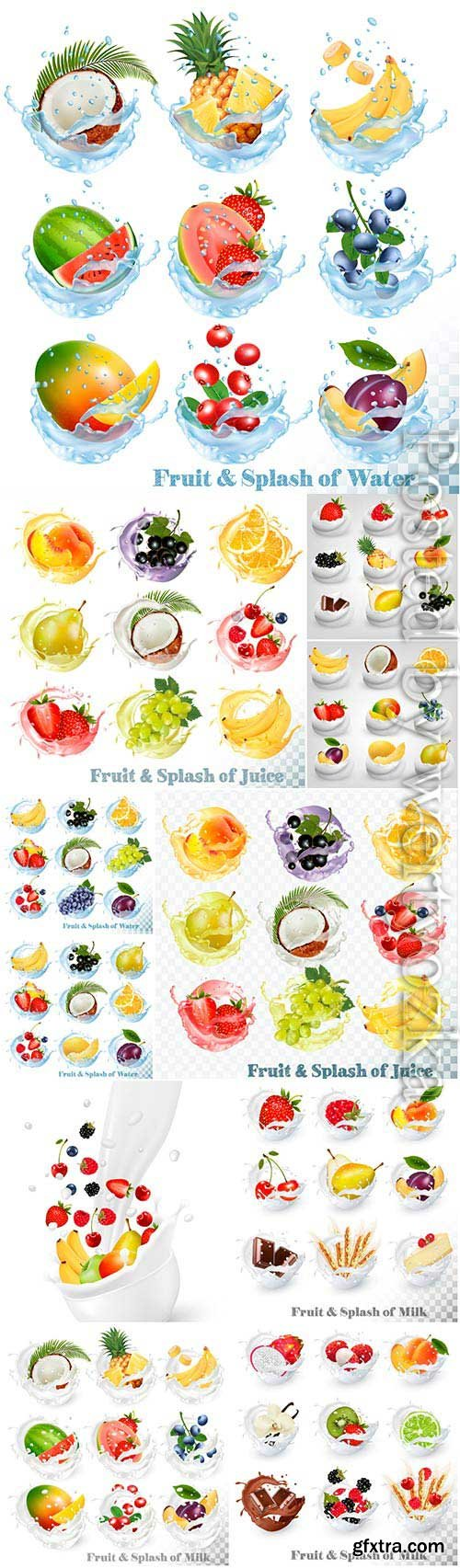 Fruits and berries in water and milk in vector