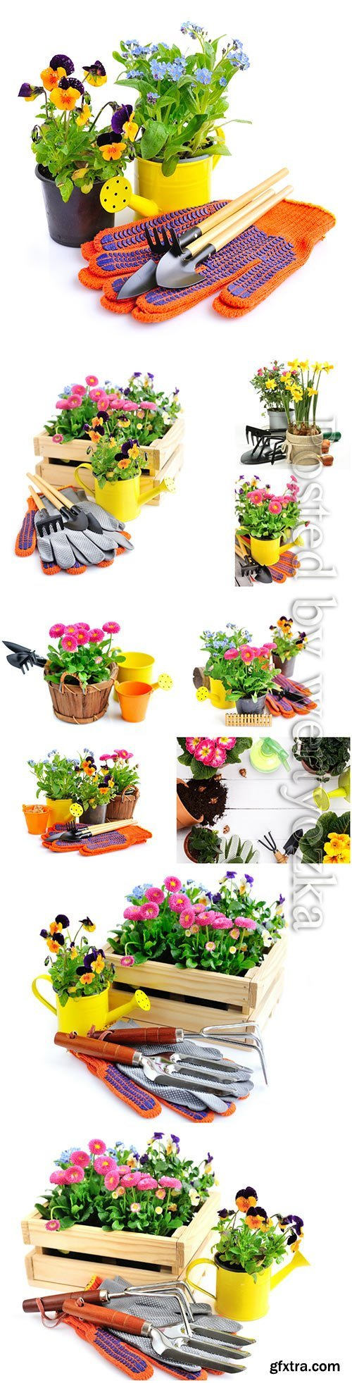Gardening tools and spring flowers