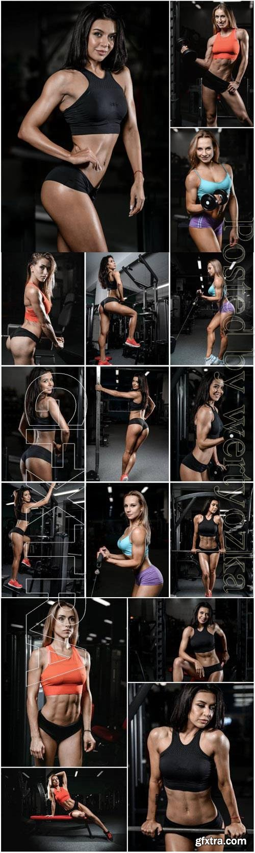 Sports girls with a beautiful figure in a gym stock photo