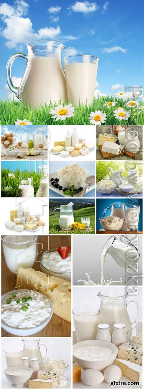 Dairy products on nature background stock photo