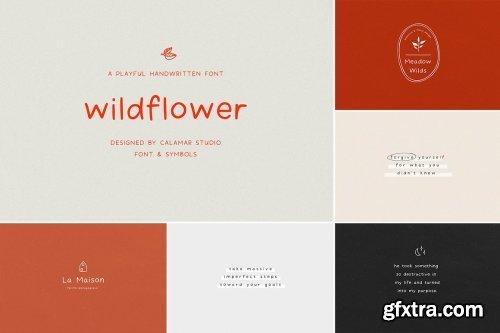 CreativeMarket - The Sans & Serif Font Bundle 5485405