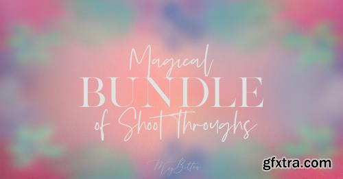 Meg Bitton - Magical Bundle of Shoot Throughs
