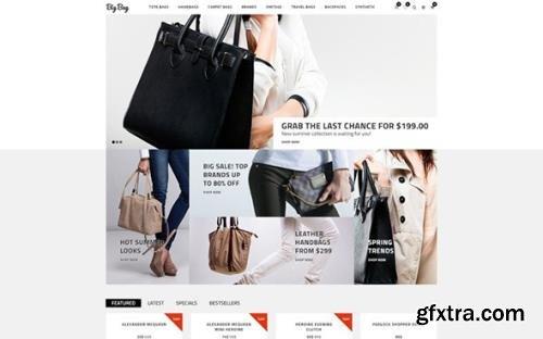 Big Bag v1.0 - Handbag Store OpenCart Template - TM 61311