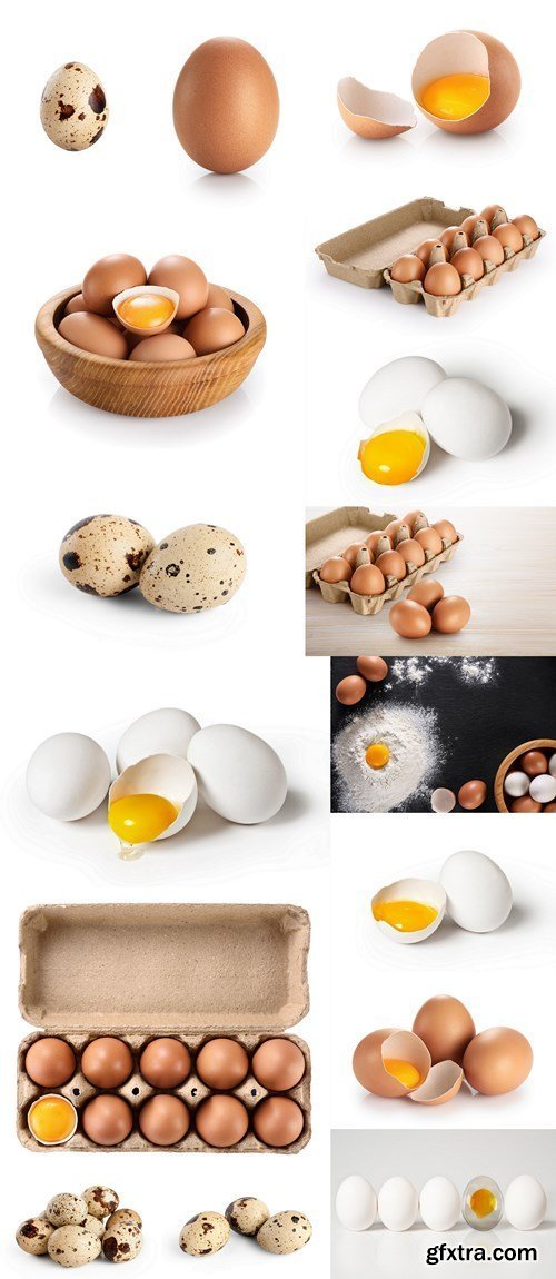 Eggs, Quail eggs - 16xHQ JPEG