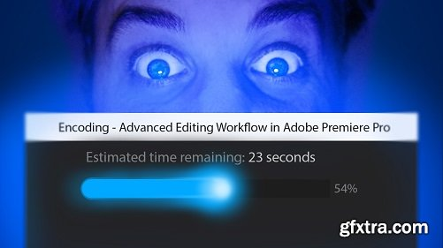 Video Optimization in Adobe Premiere Pro: Creating a Smooth Editing Experience
