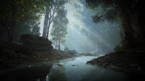 Videohive - Calm River in a Forest looped HD - 33720416 - 33720416