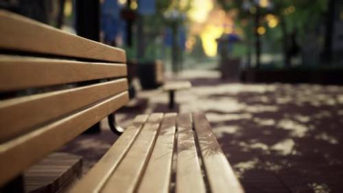 Videohive - Quiet City Park with Trees and Benches - 33823692 - 33823692