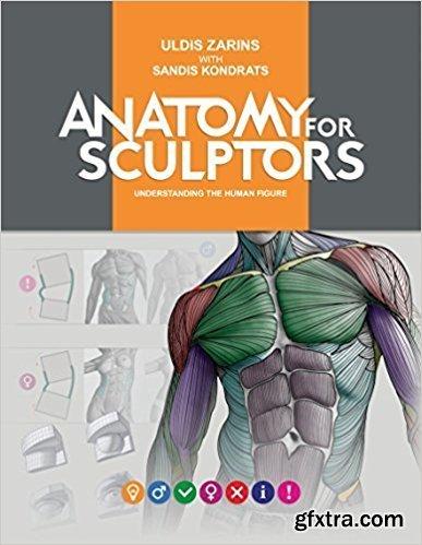 Anatomy for Sculptors Understanding the Human Figure