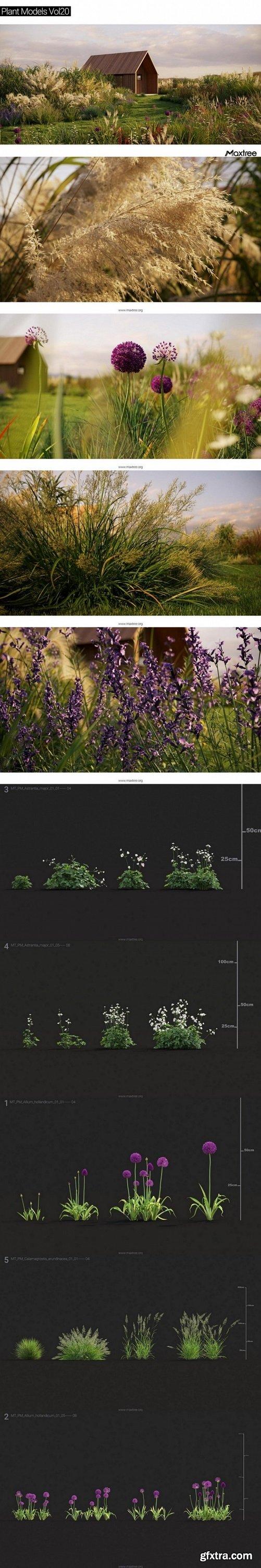 Maxtree - Plant Models Vol 20