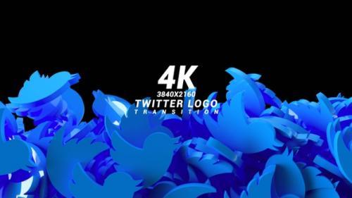 Videohive - Twitter Logo Transition - 33850911 - 33850911