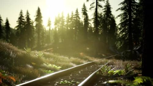 Videohive - Autumn Colours Along a Railway Track at Sunset - 33858307 - 33858307