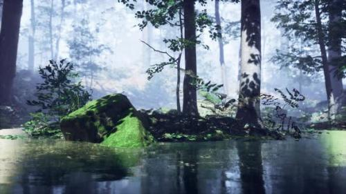 Videohive - Mist on Pond in Forest with Fog - 33858377 - 33858377