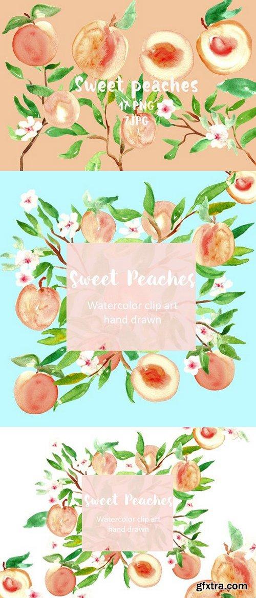 Peach. Watercolor clip art