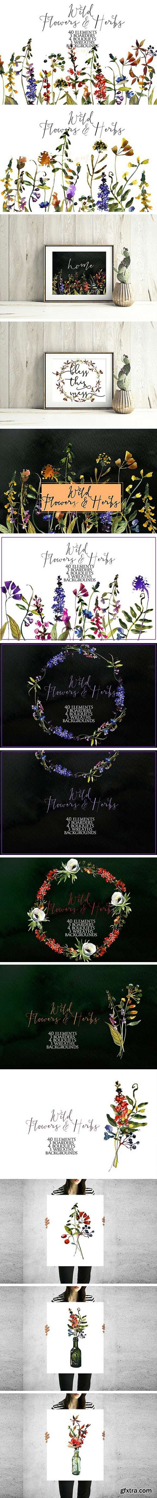 Wild Flowers & Herbs Watercolor Set