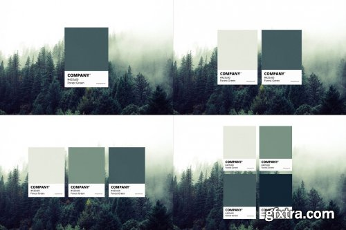 CreativeMarket - Color Match Mockup Set 6343287