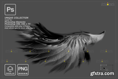 Black Angel Wings Overlay