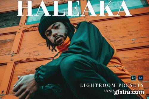Haleaka Mobile and Desktop Lightroom Presets