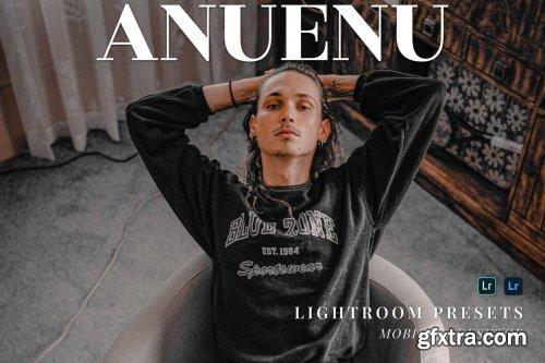 Anuenu Mobile and Desktop Lightroom Presets