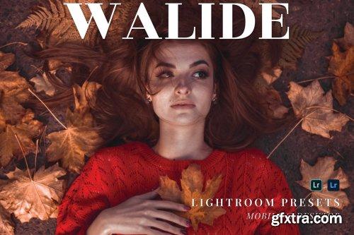 Walide Mobile and Desktop Lightroom Presets