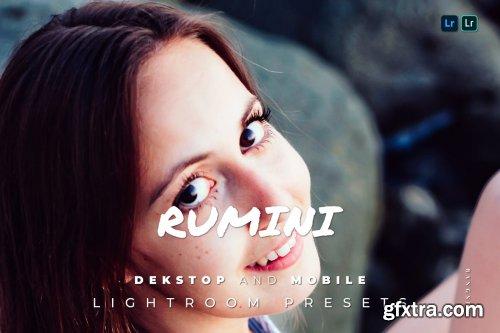 Rumini Desktop and Mobile Lightroom Preset