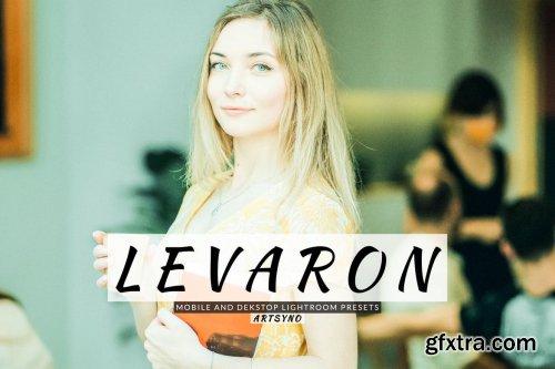 Levaron Lightroom Presets Dekstop and Mobile