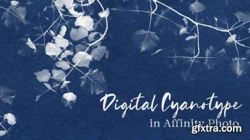 Digital Cyanotypes in Affinity Photo | A Quick Tip Class