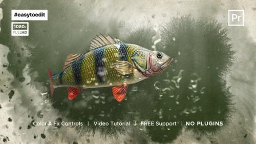 Videohive - Fish Logo Reveal Template - 34195788 - 34195788