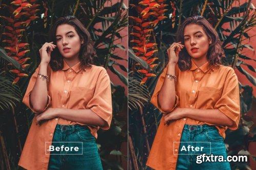 True Color Photoshop Action