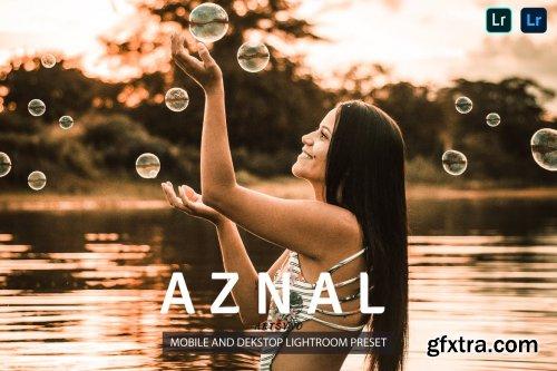 Aznal Lightroom Presets Dekstop and Mobile
