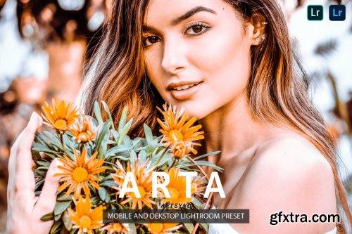 Arta Lightroom Presets Dekstop and Mobile