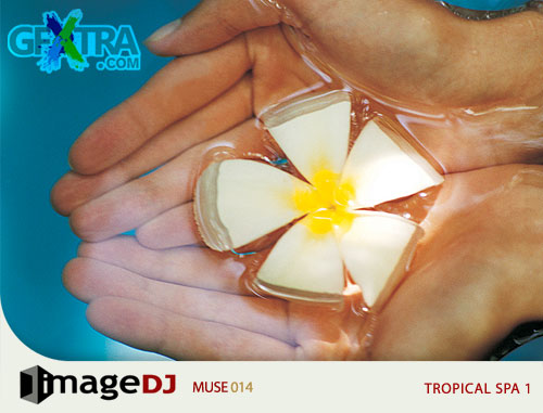 ImageDJ Muse MU014 Tropical Spa 1
