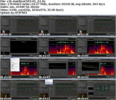 Adobe Audition CS5.5 v4.0 + Mac OSX - Multilingual + Keygen ...