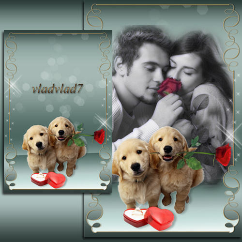 Romantic Photoframe - Puppies with rose and ring