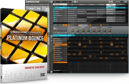 Native Instruments Maschine Expansion Platinum Bounce-R2R
