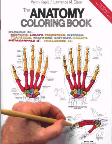 kaplan anatomy coloring book reviews childrens coloring books pdf anatomy book free download - Anatomy Coloring Book Free