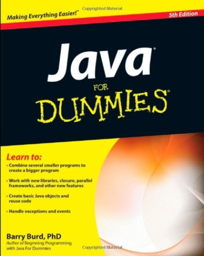 Java For Dummies (5th Edition)