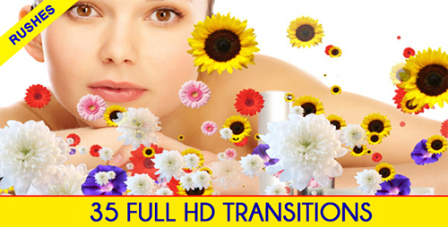VideoHive Editors Transition Pack (Motion Graphics)