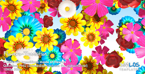Videohive - Flowers Transition Pack (Motion Graphics)
