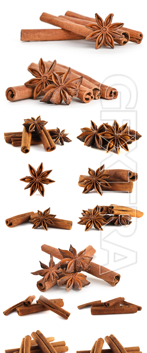 Cinnamon - Stock photo