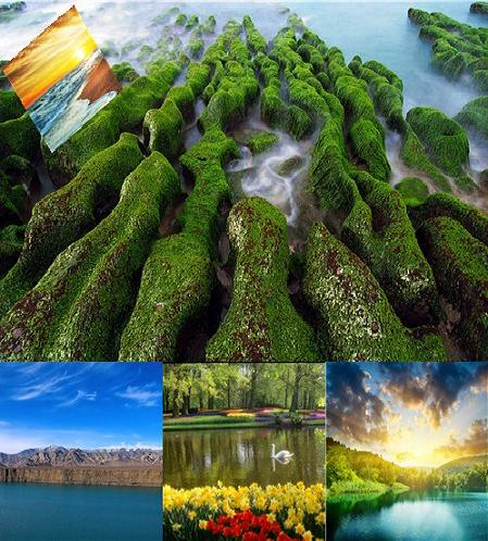 wallpaper nature beauty. Categories: Wallpapers. The
